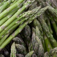 Riverford Organic Farm Asparagus