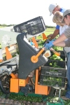 harvesting salad pack in devon