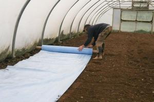 Ed's Farm Blog - Organic Salad