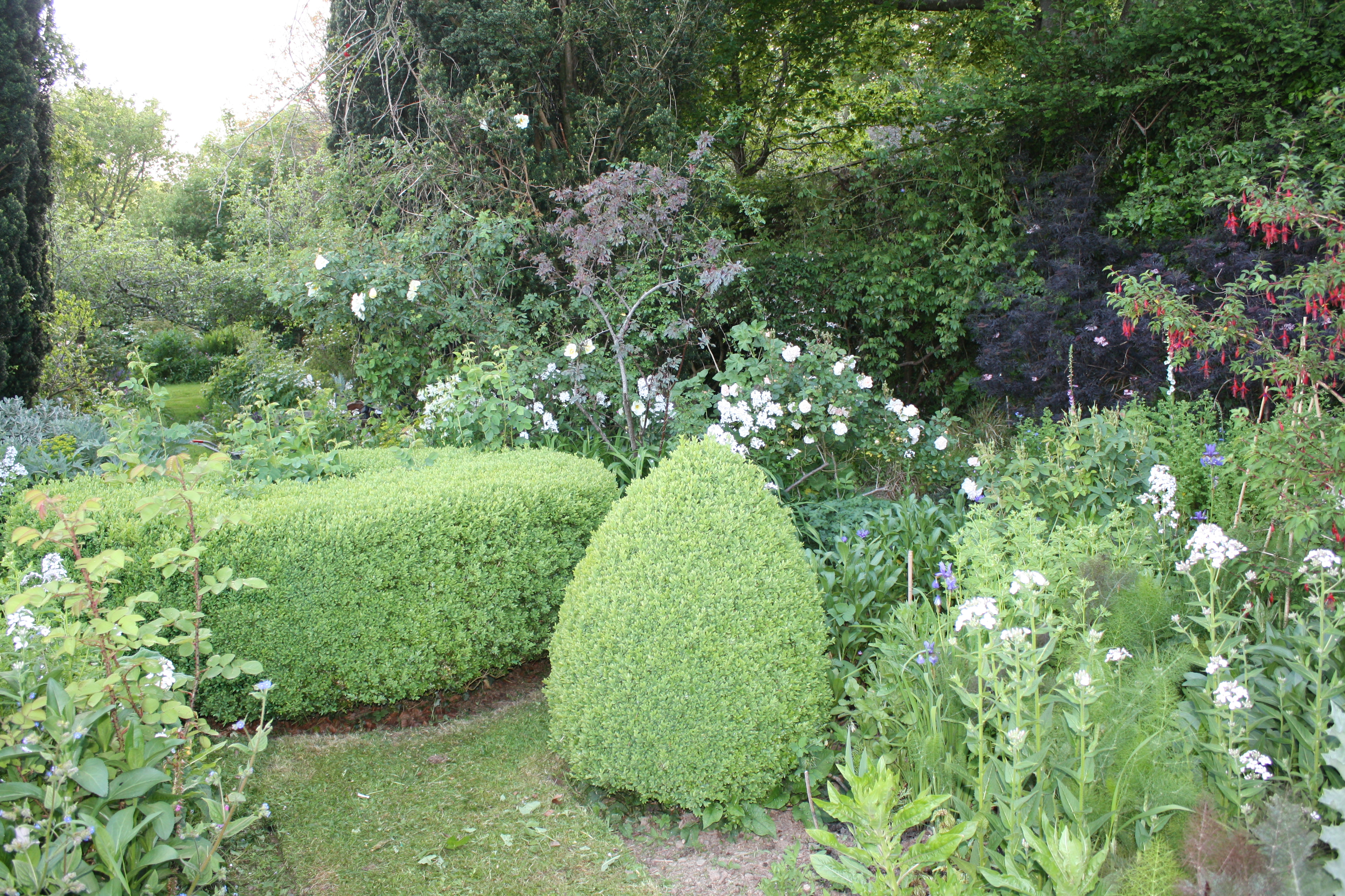 Formal garden with loose informal planting