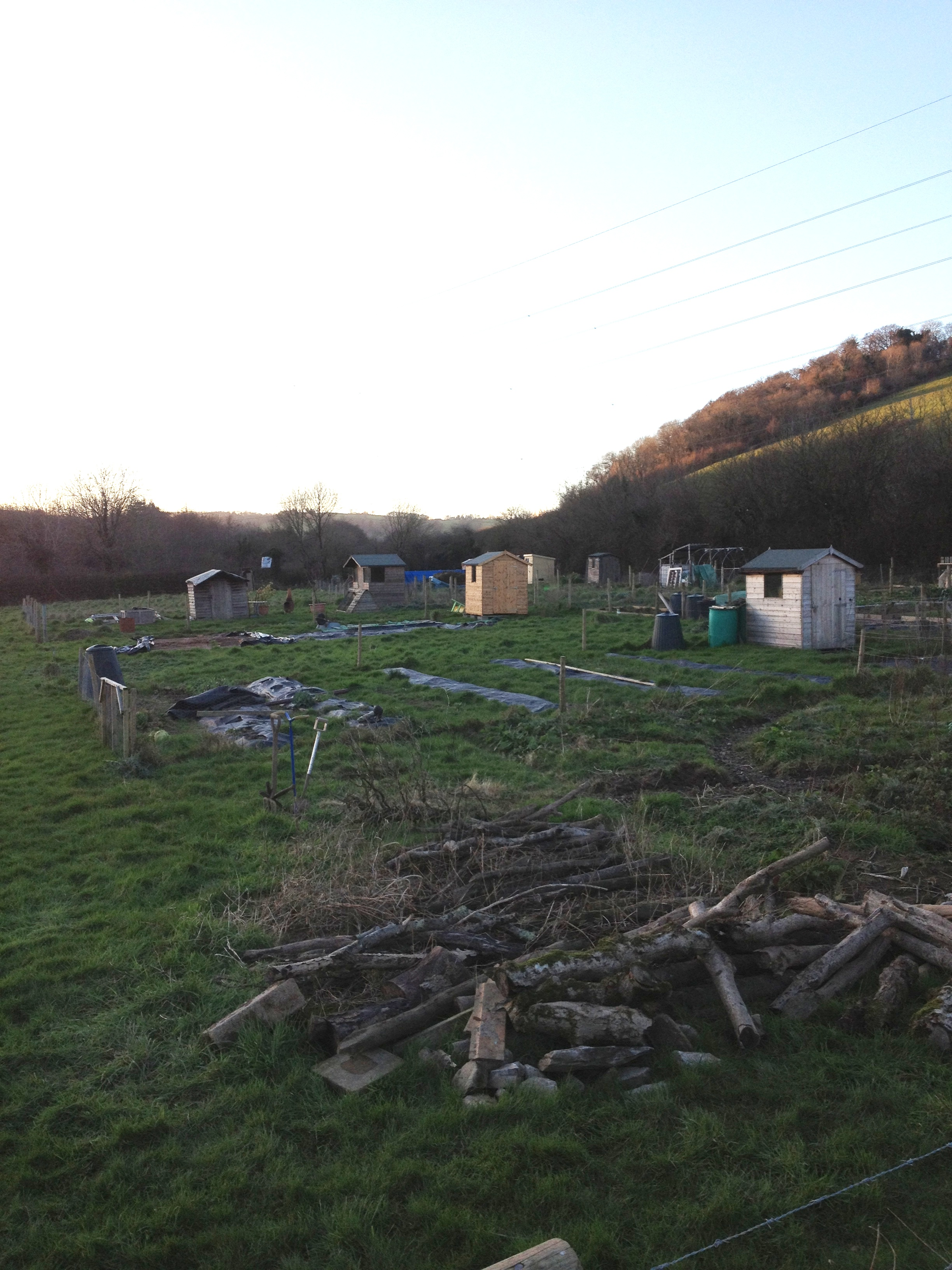 Signs of Spring & our boxes to grow - The Riverford Blog