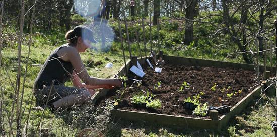garden patch grow box instructions