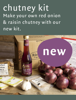 Kirsty's red onion & raisin chutney