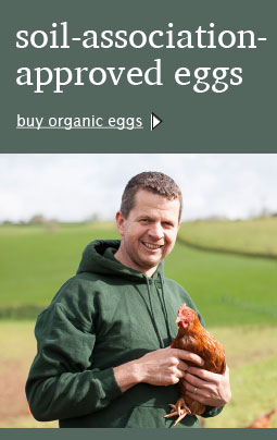 organic free range eggs mixed x6